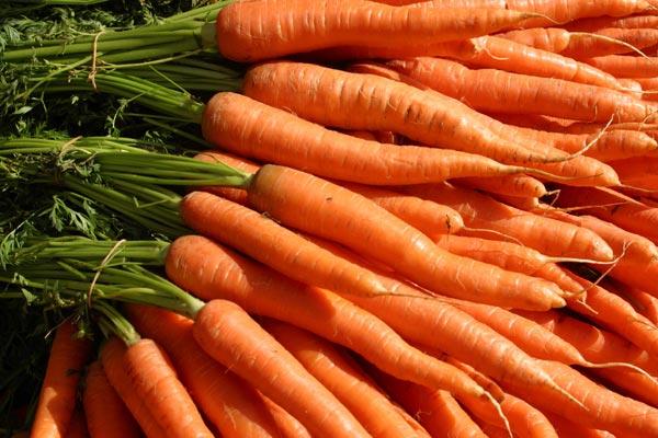 cenouras-beneficios